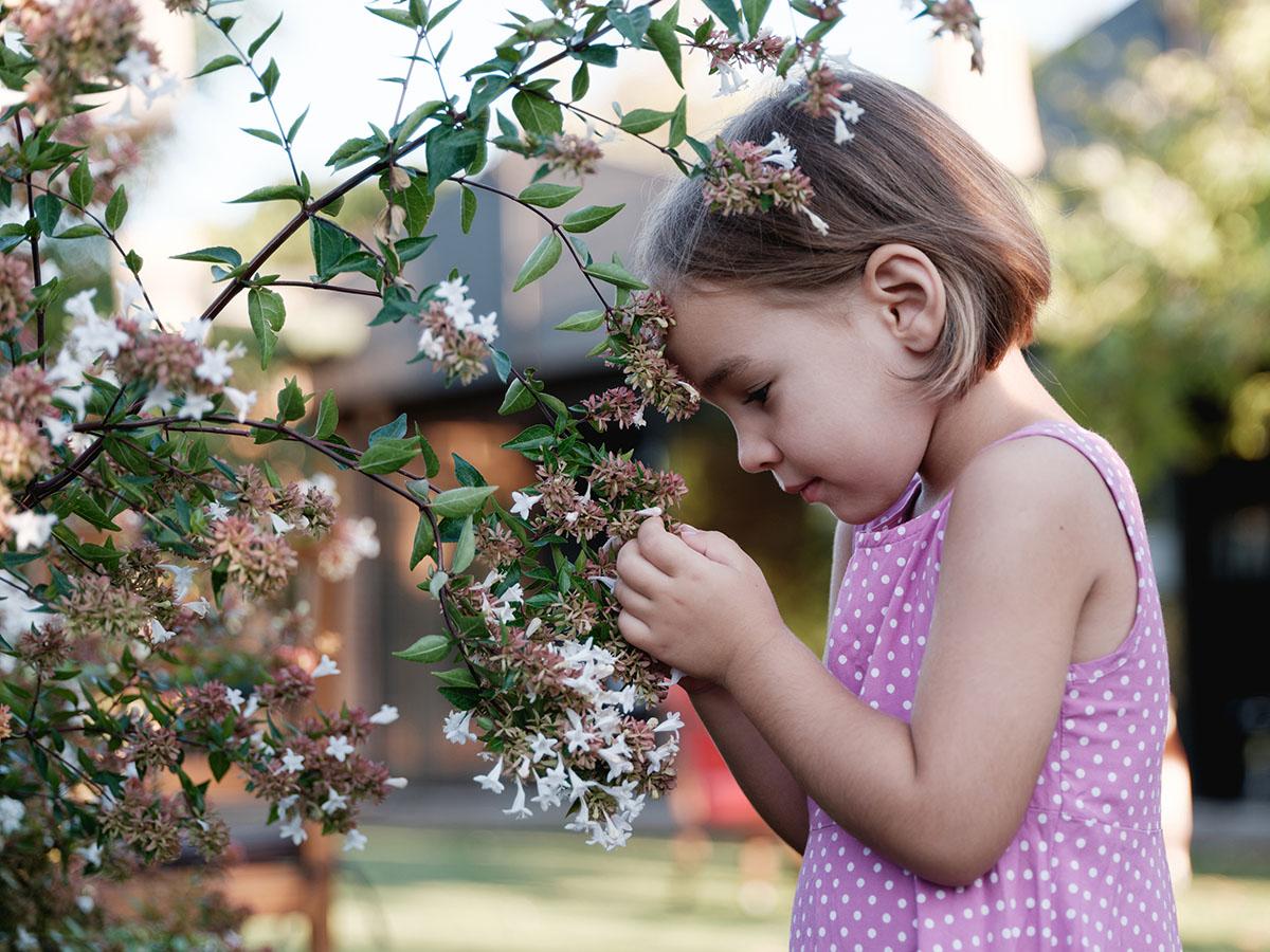 Ungiftige Pflanzen für Kinder – ein Mädchen hält einen blühenden Ast und betrachtet ihn.