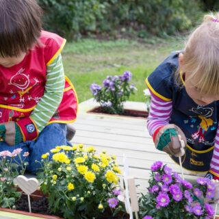 Grünes Klassenzimmer - Zwei kleine Mädchen pflanzen Blumen in einen Pflanzkasten.